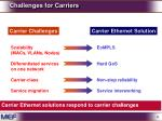 challenges for carriers