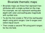 bivariate thematic maps
