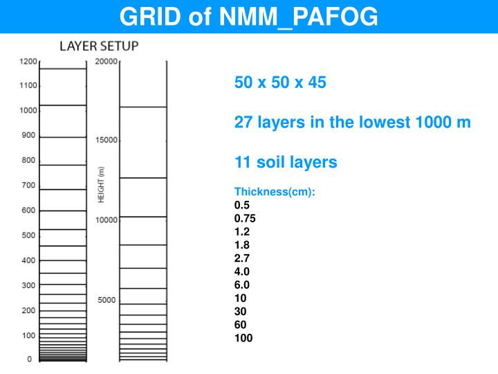 GRID of NMM_PAFOG