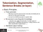 tokenization segmentation sentence breaks w layer