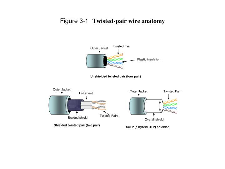 Figure 3 1 twisted pair wire anatomy