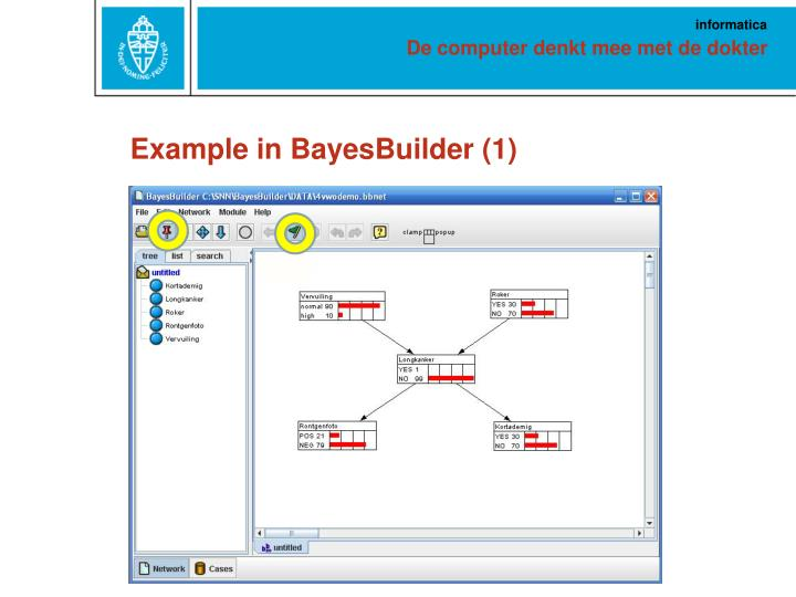 Example in BayesBuilder (1)