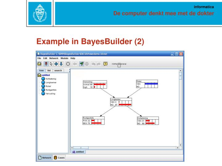 Example in BayesBuilder (2)