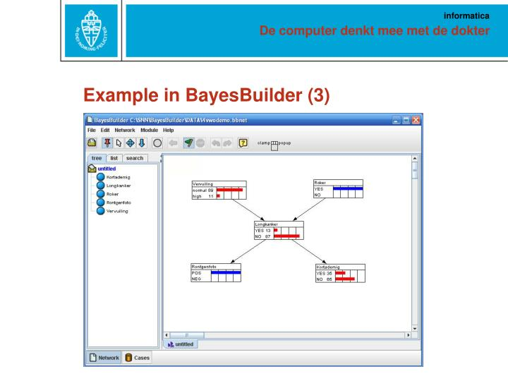 Example in BayesBuilder (3)