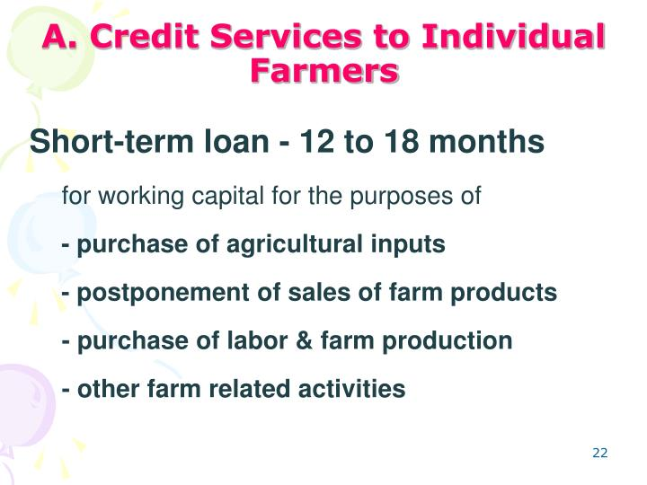 A. Credit Services to Individual Farmers