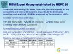mbm expert group established by mepc 601