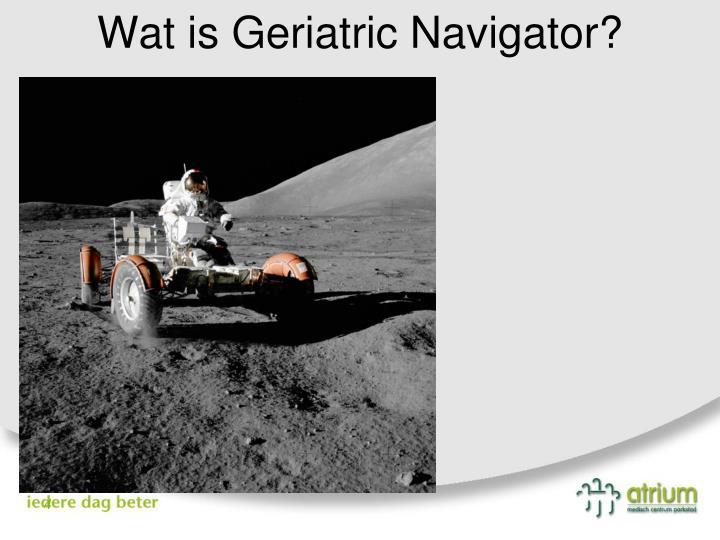 Wat is Geriatric Navigator?