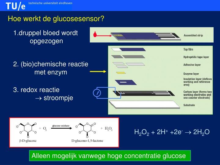Hoe werkt de glucosesensor?