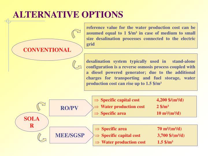 ALTERNATIVE OPTIONS