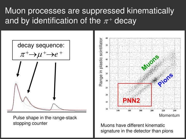 Muon processes are suppressed kinematically and by identification of the