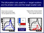 the bifurcation cuts used for target scatters are the photon veto and the target scatter cuts