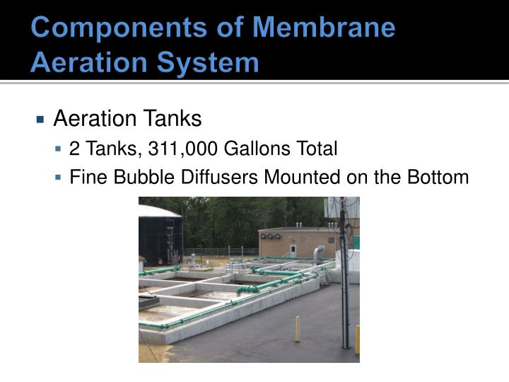 Components of Membrane Aeration System