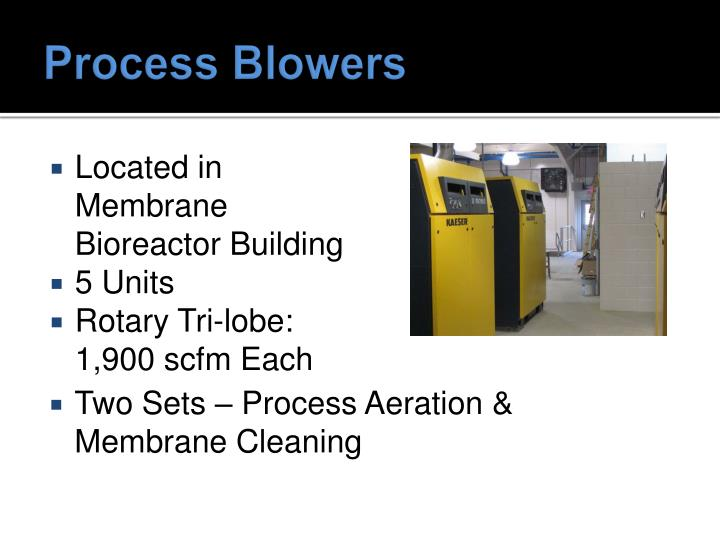Process Blowers