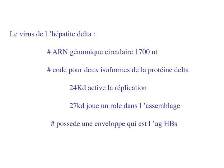 Le virus de l'hépatite delta :