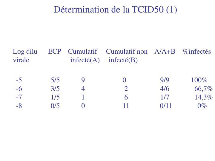 Détermination de la TCID50 (1)