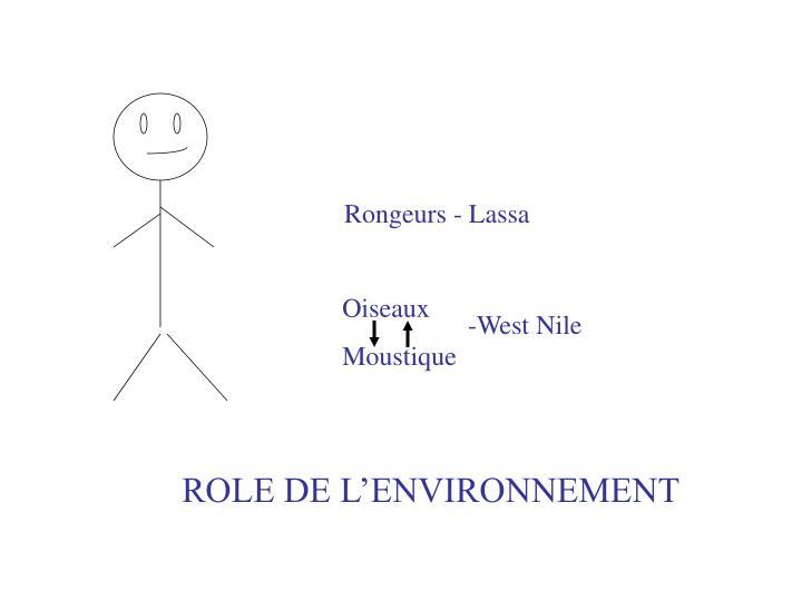 Rongeurs - Lassa