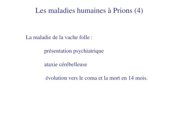 Les maladies humaines à Prions (4)