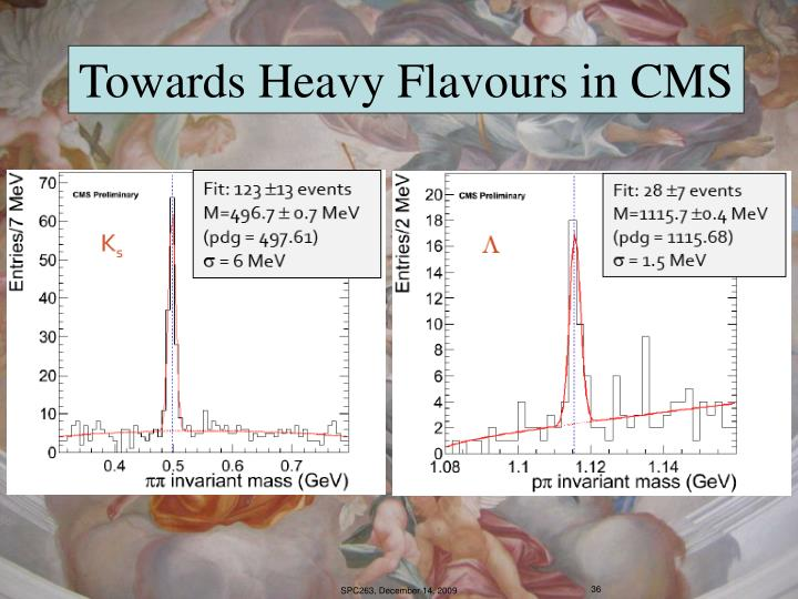 Towards Heavy Flavours in CMS