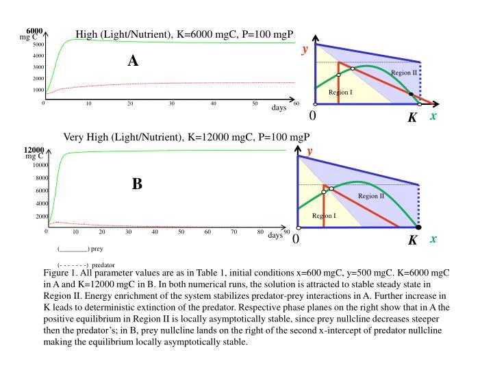 High (Light/Nutrient), K=6000 mgC, P=100 mgP