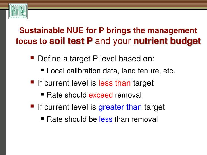 Sustainable NUE for P brings the management focus to
