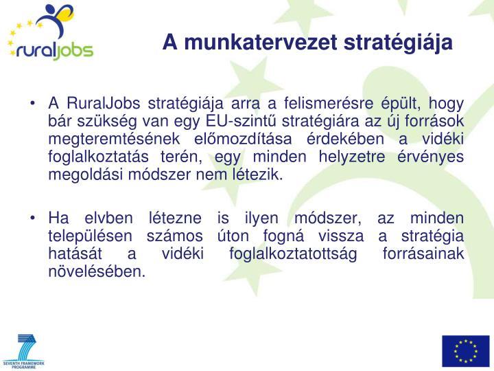 A RuralJobs stratégiája arra a felismerésre épült, hogy bár szükség van egy EU-szintű stratégiára az új források megteremtésének előmozdítása érdekében a vidéki foglalkoztatás terén, egy minden helyzetre érvényes megoldási módszer nem létezik.
