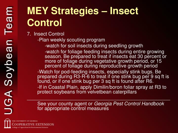 MEY Strategies – Insect Control