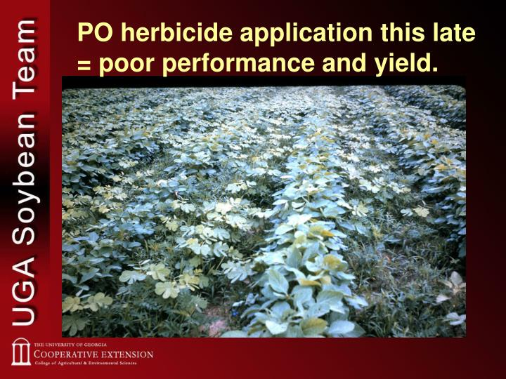 PO herbicide application this late = poor performance and yield.