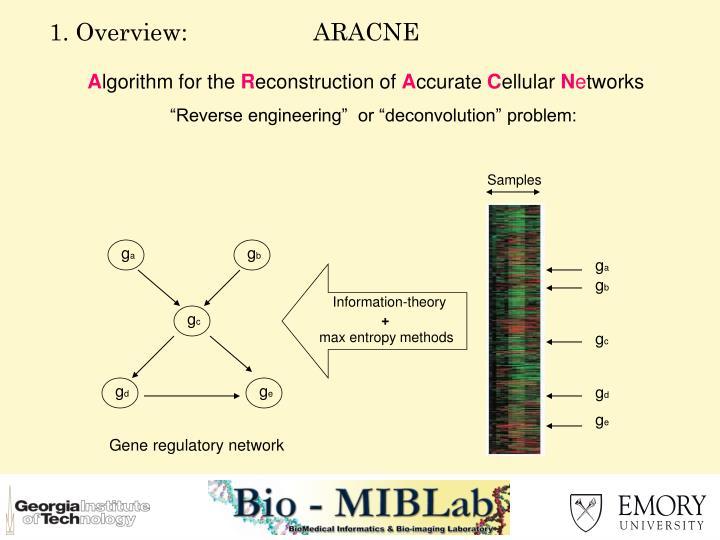1. Overview:                   ARACNE