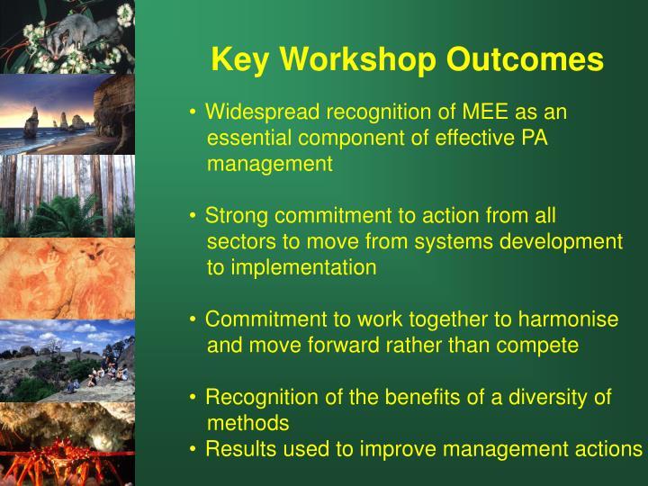Key Workshop Outcomes