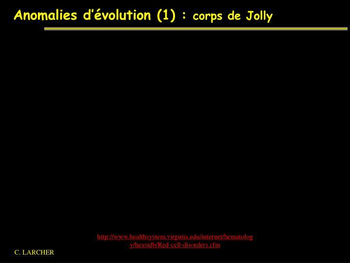 Anomalies d'évolution (1) :
