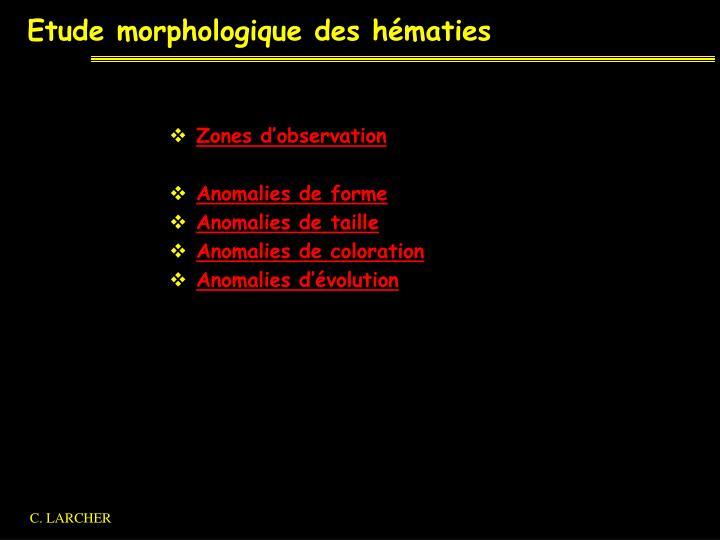 Etude morphologique des hématies