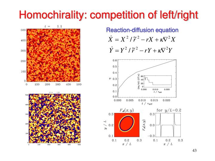 Homochirality: competition of left/right