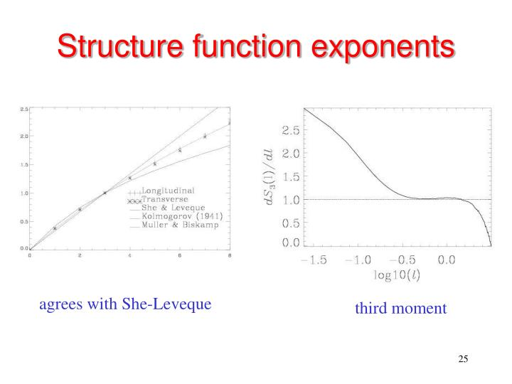 Structure function exponents
