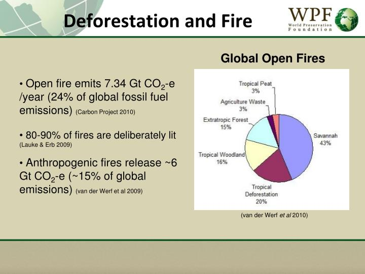 Deforestation and Fire