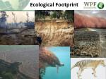 ecological footprint1
