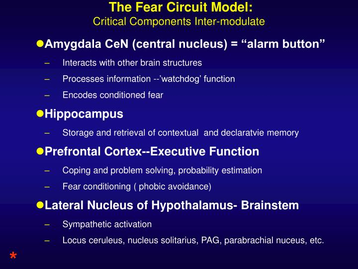 The Fear Circuit Model: