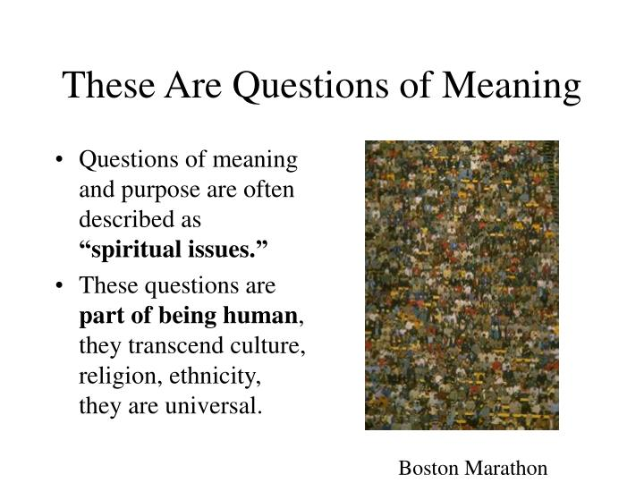 These Are Questions of Meaning