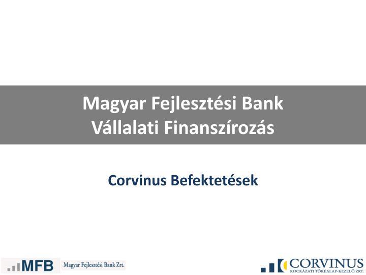 magyar fejleszt si bank v llalati finansz roz s