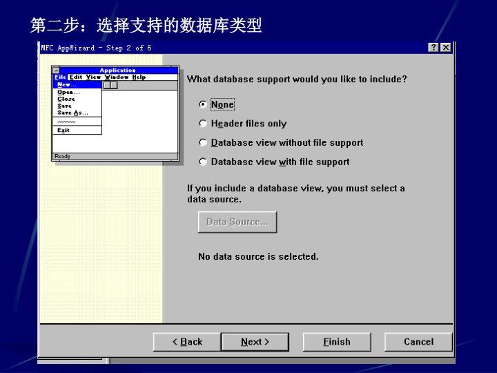 第二步:选择支持的数据库类型