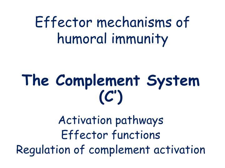 Effector mechanisms of humoral immunity