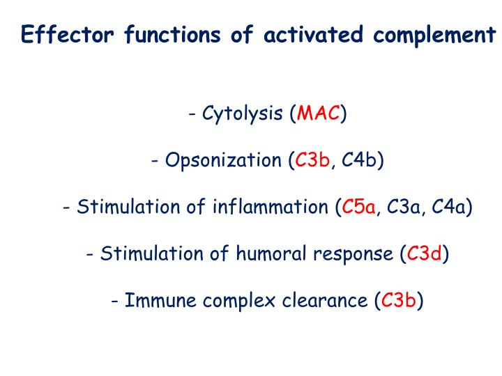 Effector functions of activated complement
