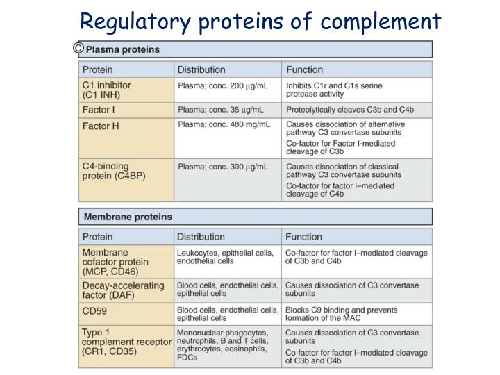 Regulatory proteins of complement
