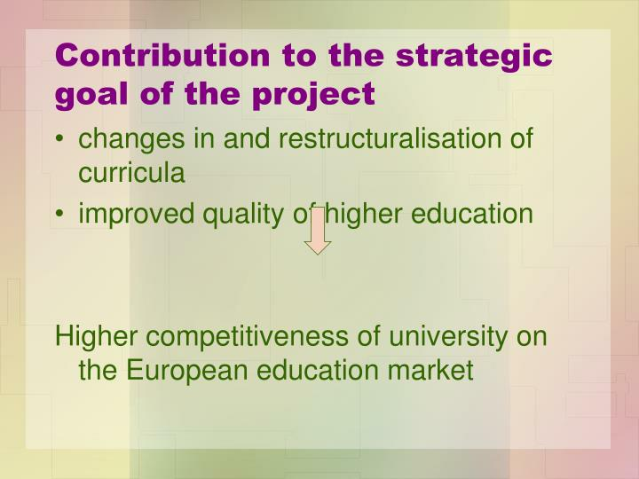 Contribution to the strategic goal of the project