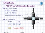 candles i pop proof of principle detector