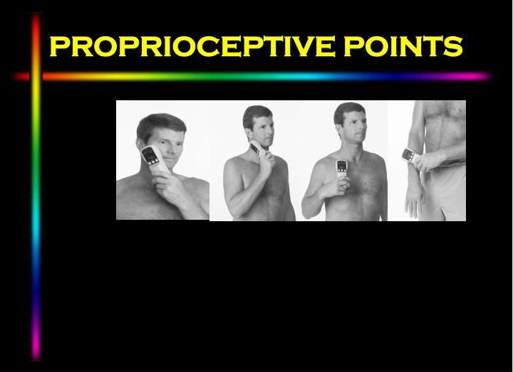 PROPRIOCEPTIVE POINTS