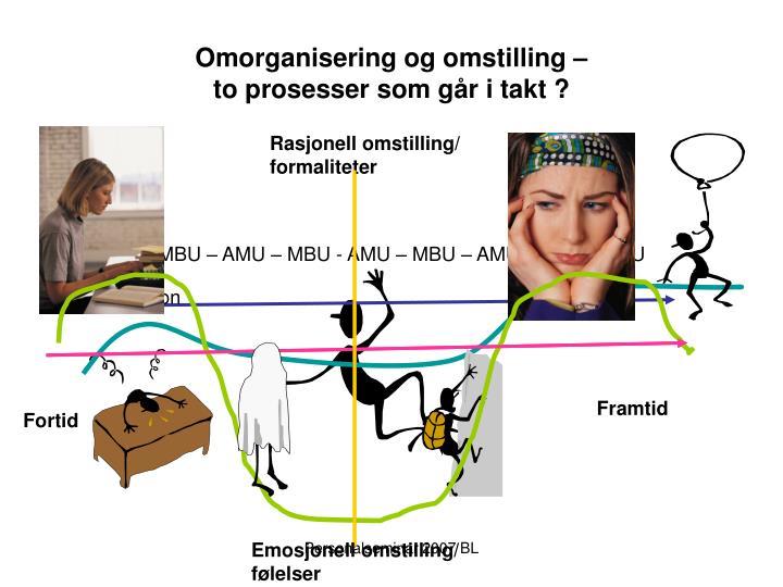 Omorganisering og omstilling –