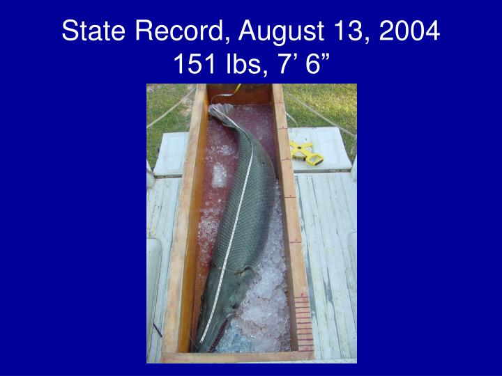 State Record, August 13, 2004