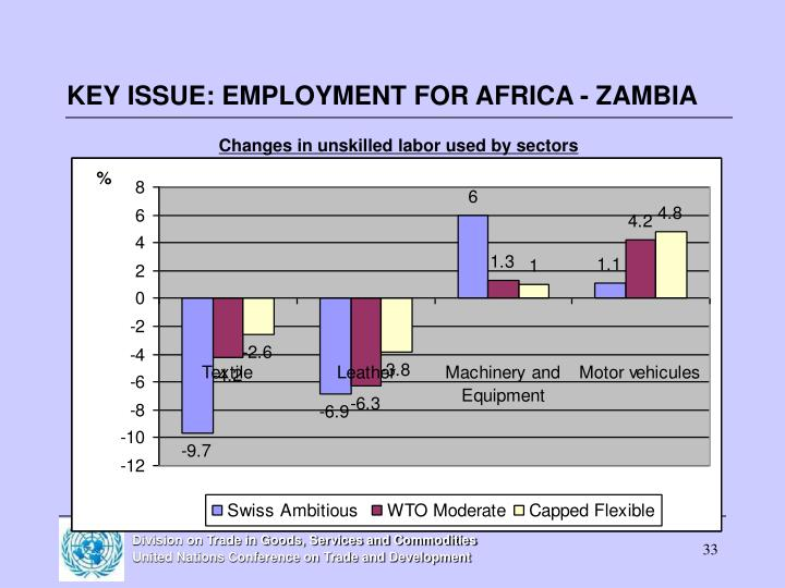 KEY ISSUE: EMPLOYMENT FOR AFRICA - ZAMBIA