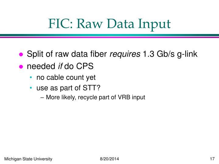 FIC: Raw Data Input