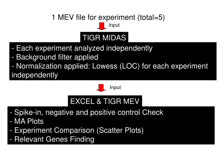 1 MEV file for experiment (total=5)